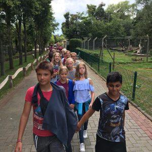 Minilager 2019: Im Gänsemarsch durch den Jaderpark